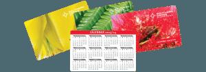 Southern Cross Calendar